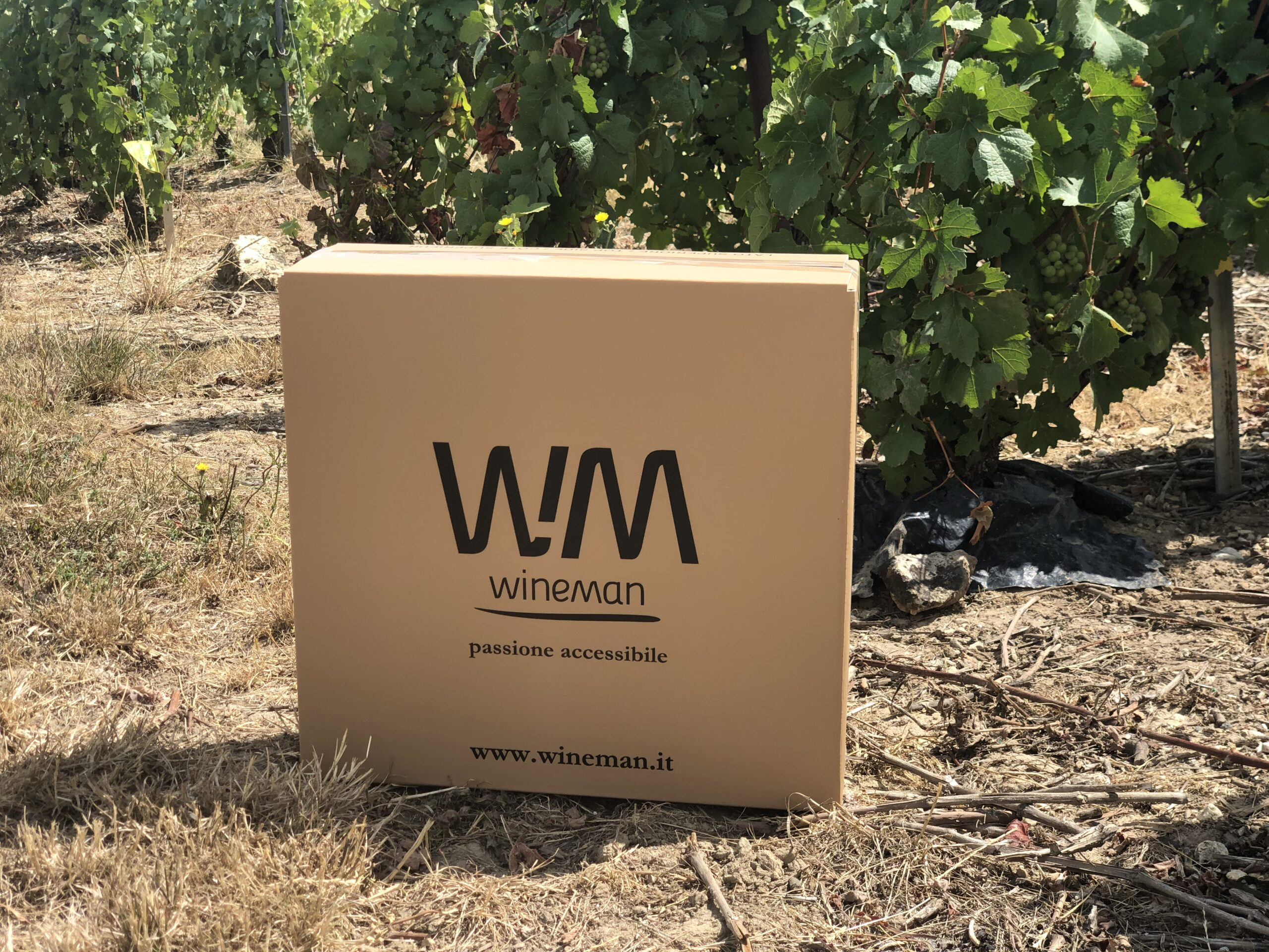 wineman box